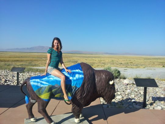 Ayo Taming a Wild Bull at the Great Salt Lake